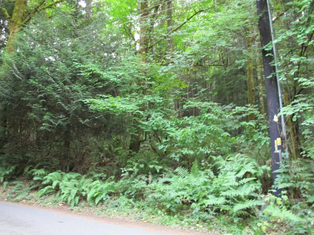 15561 Cedar Grove Rd, Poulsbo, WA 98370