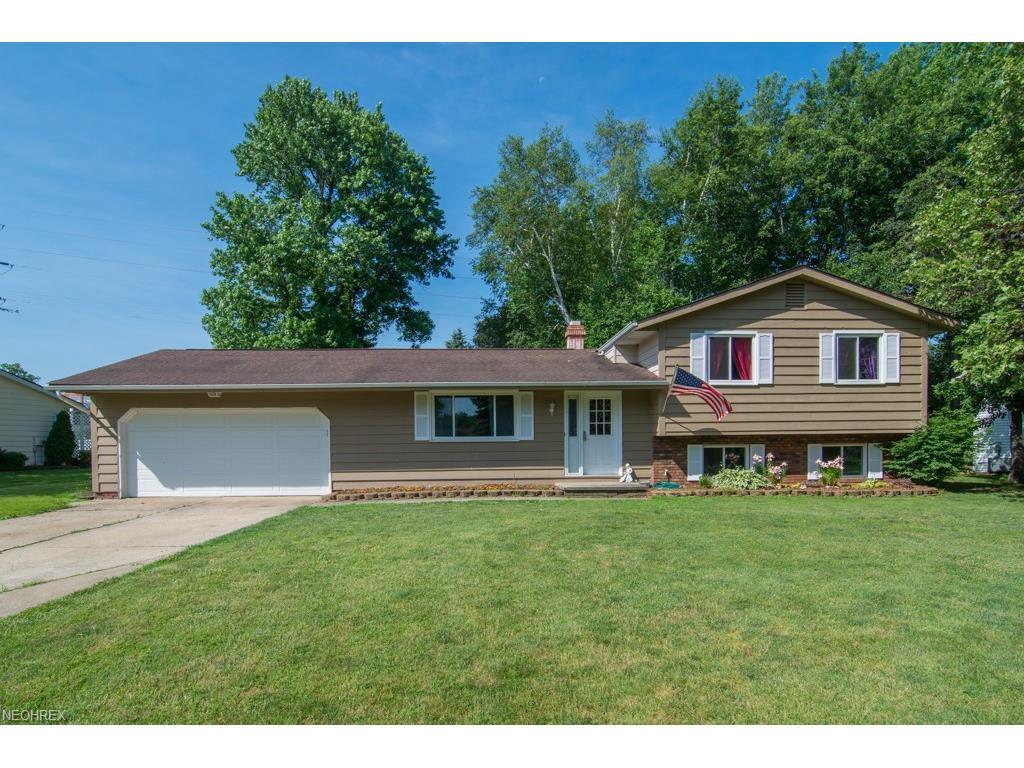 301 Hawk Ridge Dr, Painesville, OH 44077