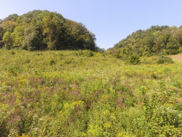 153 .96 Ac. South Fork Rd, Whitleyville, TN 38588