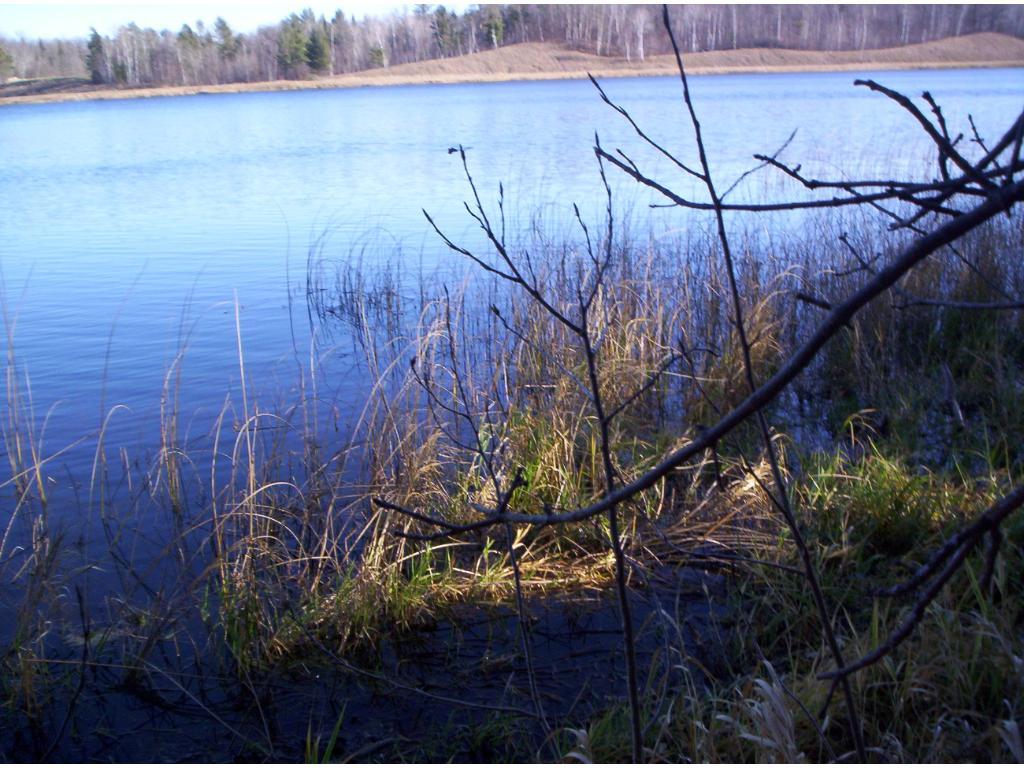 TBD Bass Lake Road, Shell Lake Twp, MN 56570