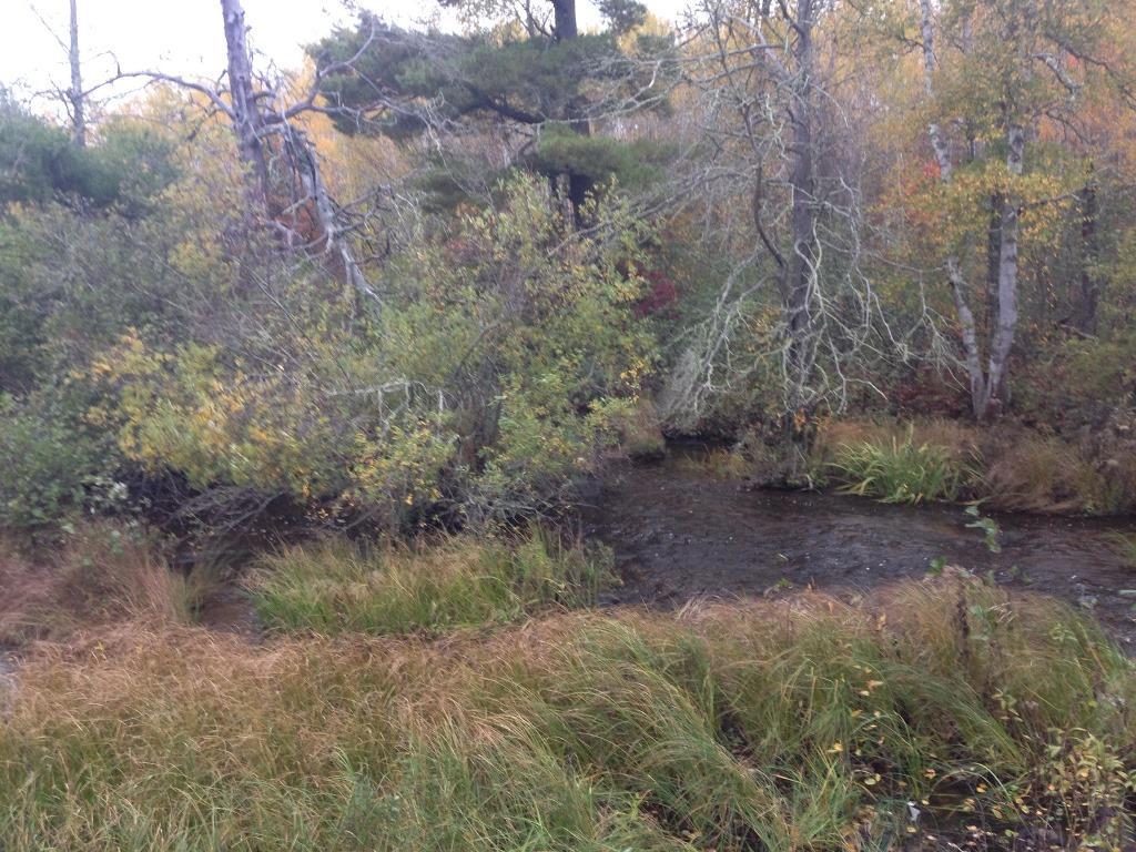 0D Flat Lake Rd, Gordon, WI 54838