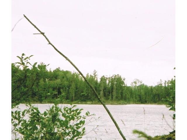 xxx Gunsten Lake Road, Stony River Twp, MN 55607