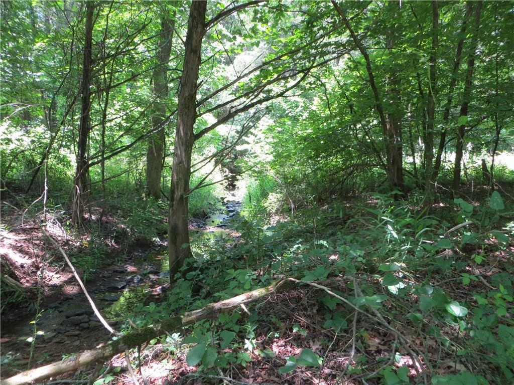 TBD Whitewater Road, 77 acres, Cedarville, AR 72932