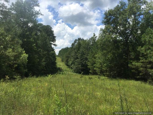 1 Monticello Drive, Monticello, MS 39140