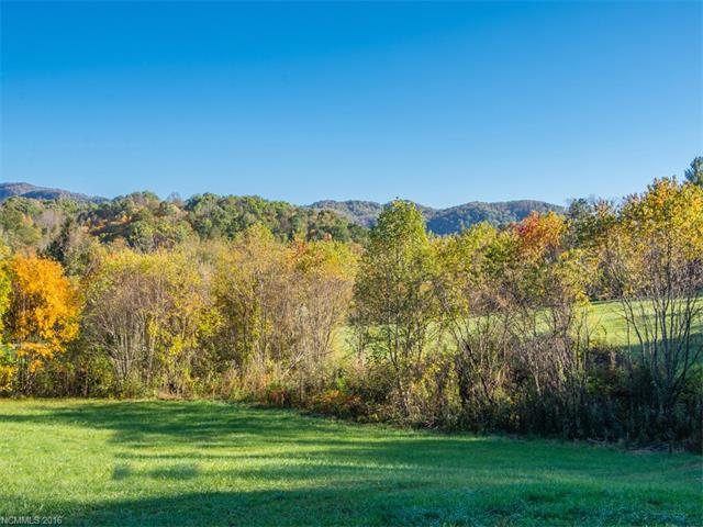 Beautiful creek front mini farm with huge views of Little Pisgah Burney & Bearwallow Mountain. Bring the horses and chickedns, garden tools and a make your dreams come true. Build your private Cane Creek Estate.