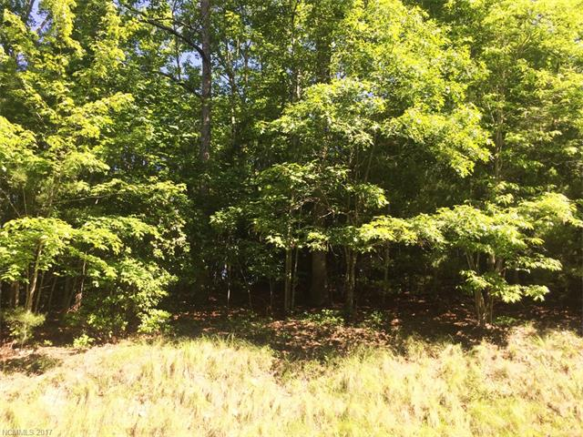 Nice, level .68 acre lot. An easy building site, conducive to a flat driveway along with beautiful hardwoods and native shrubbery make this a wonderful place to build your next home. Located in Champion Hills, just 8 minutes to downtown Hendersonville.