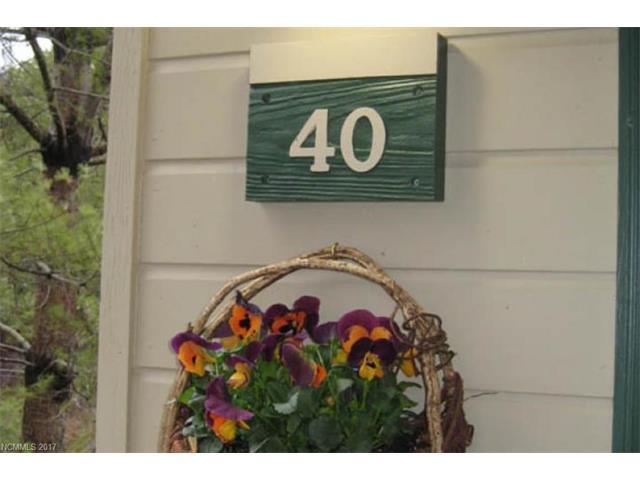 160 Whitney Boulevard 40, Lake Lure, NC 28746