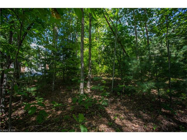 Builders take note on this beautiful lot in Woodland Trails! Easy to build lot with tons of privacy in a great neighborhood. Surrounding homes are $375,000 and up. Crawl Space would be recommended on this lot. City water is available and septic would be needed. Come see this lot and it won't disappoint!