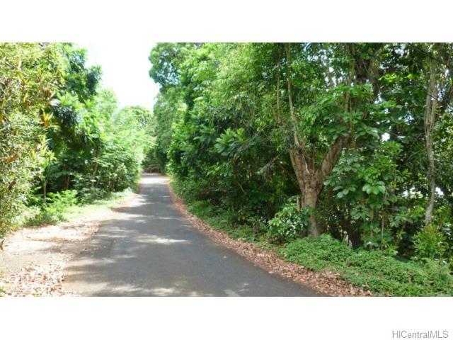 47-396 Ahaolelo Road, Kaneohe, HI 96744