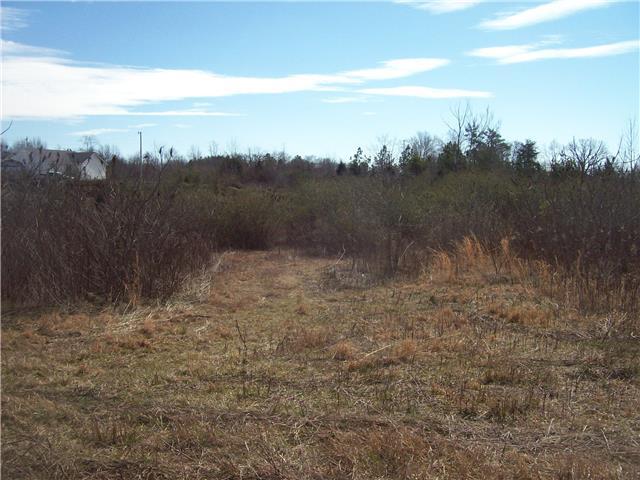 0 Meadow Dr, Iron City, TN 38463