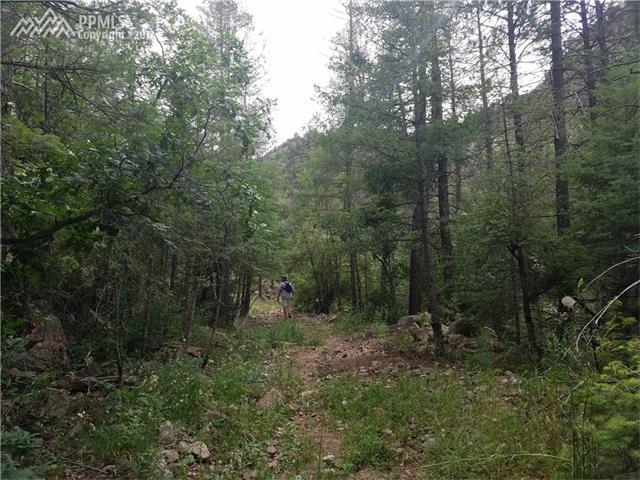 1285 Rock Creek Canyon Road, Colorado Springs, CO 80926