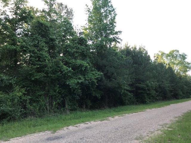 Autrey Lane NE, Brookhaven, MS 39601