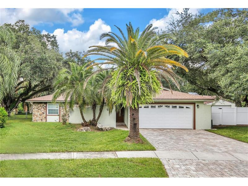 513 CONSTITUTION DRIVE, TAMPA, FL 33613