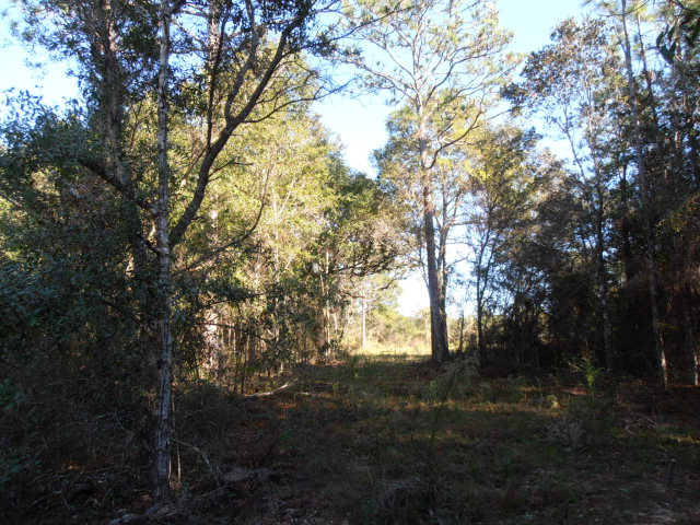 9268 Soldier Creek Rd, Lillian, AL 36549