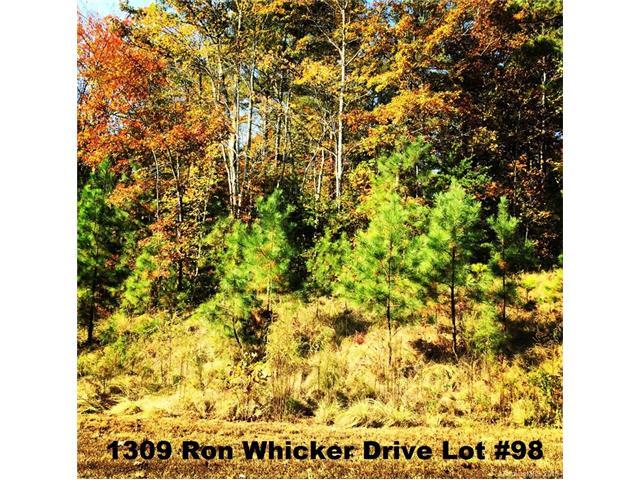 1309 Ron Whicker Drive 98, Catawba, NC 28609