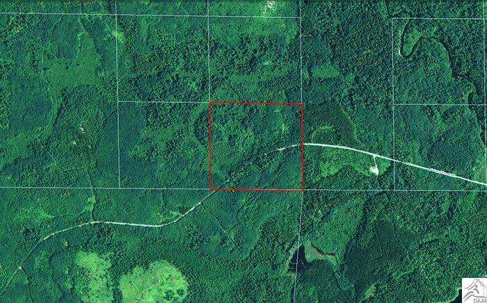 TBD National Forest Rd, Side Lake, MN 55781