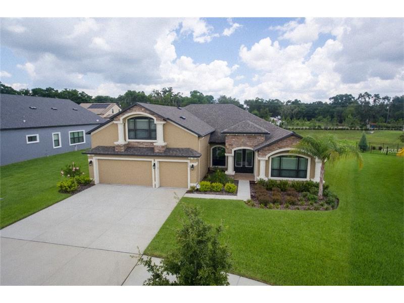 2827 COLEWOOD LANE, DOVER, FL 33527