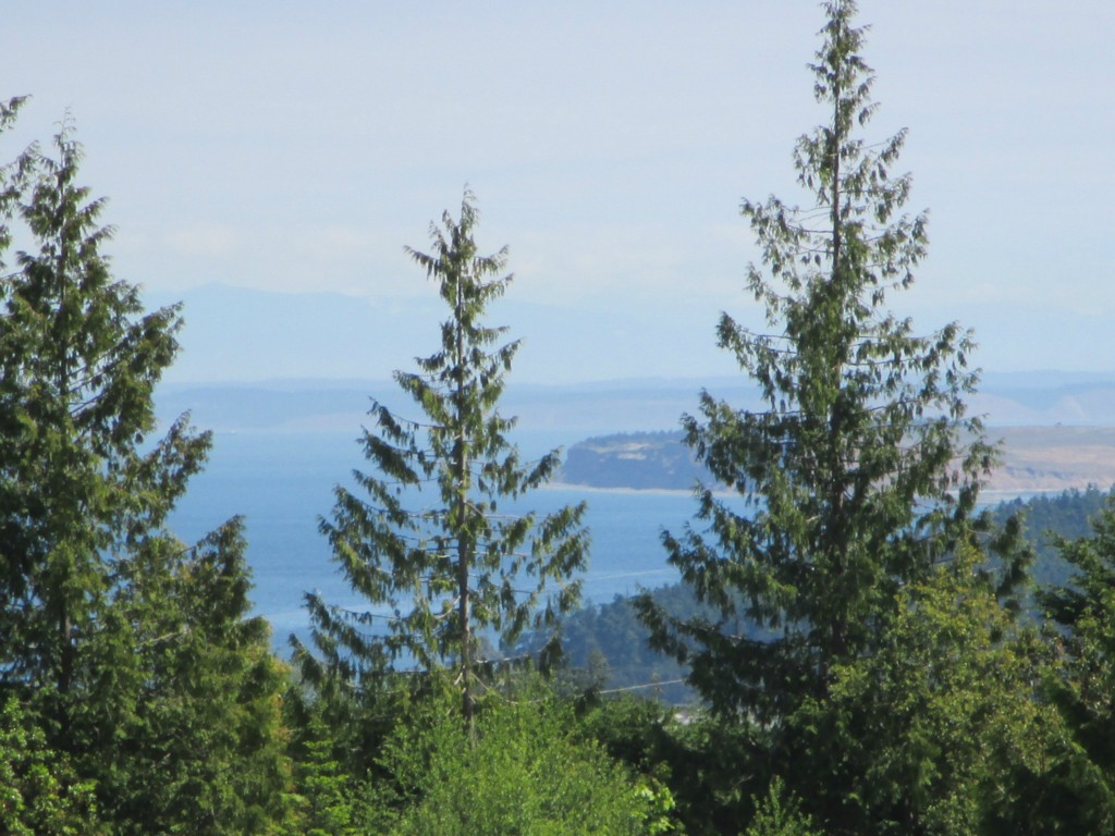 Elk Pass, Sequim, WA 98932