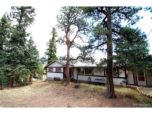 12426 S Danny Avenue, Pine, CO 80470
