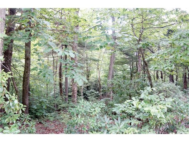 Very large wooded building site, slightly sloping, easy site for either a one level home or a home with a basement.  The requirement for building a one level is 2200 sf minimum. Please call for the restrictions or for assistance in the showing process.