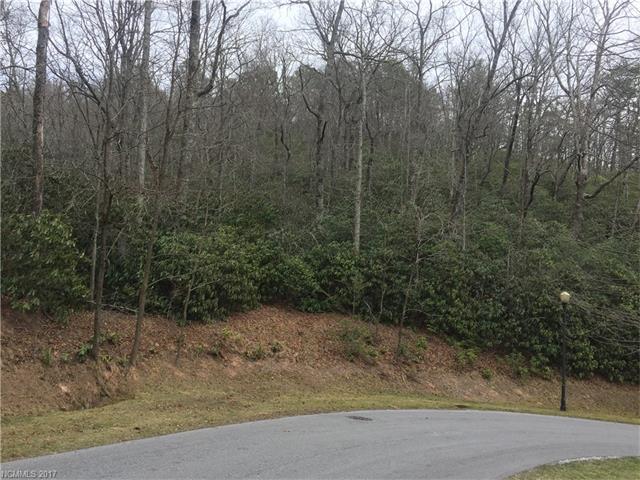 M75R Pine Mountain Trail M75R, Brevard, NC 28712