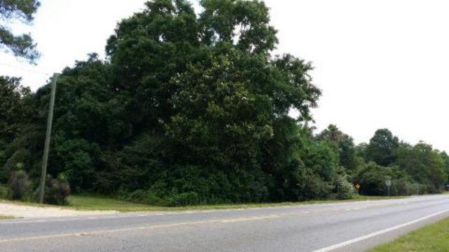 Highway 98, Magnolia Springs, AL 36555