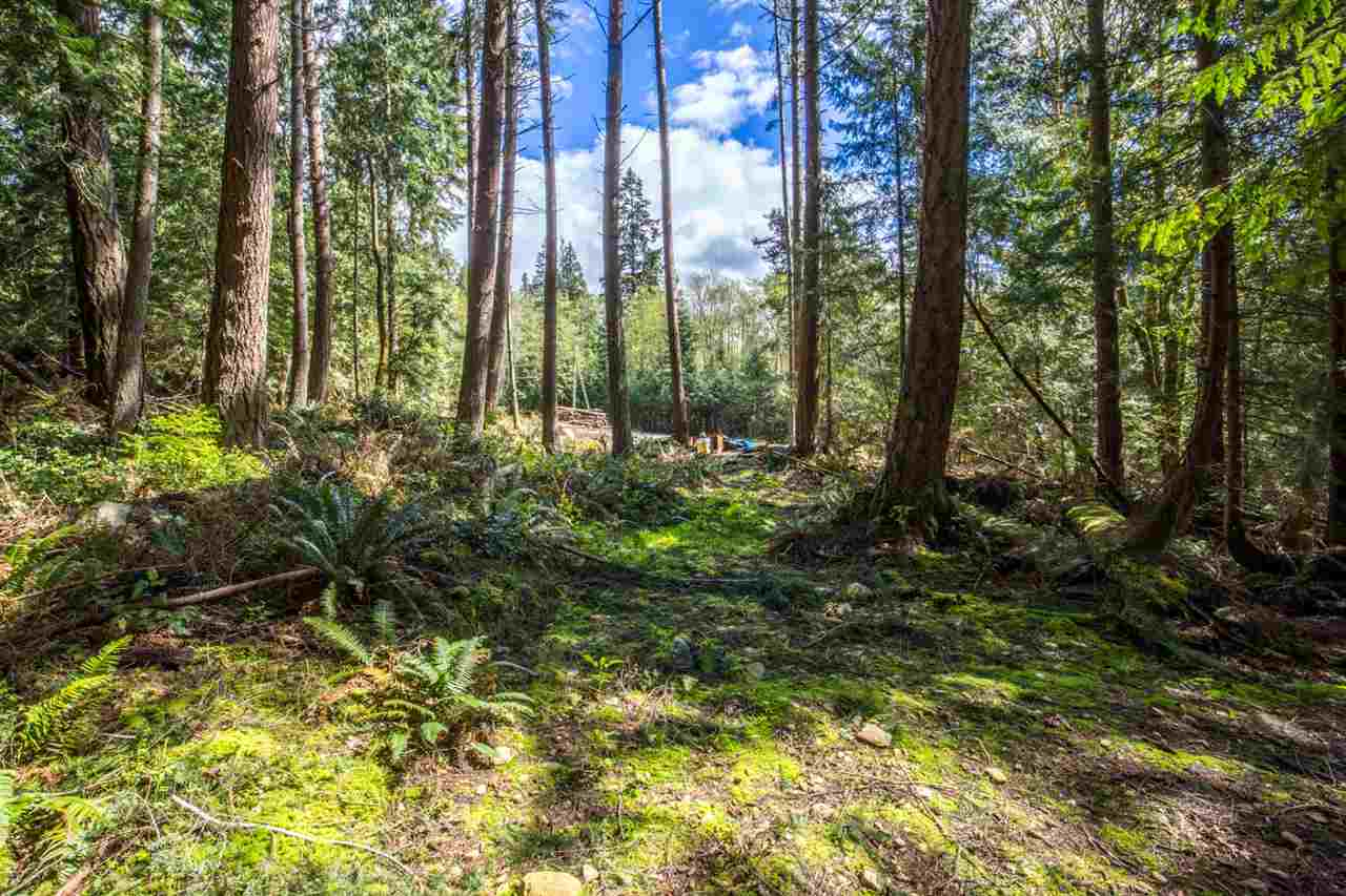 LOT 1 MARGARET ROAD, Roberts Creek, BC V0N 2W2