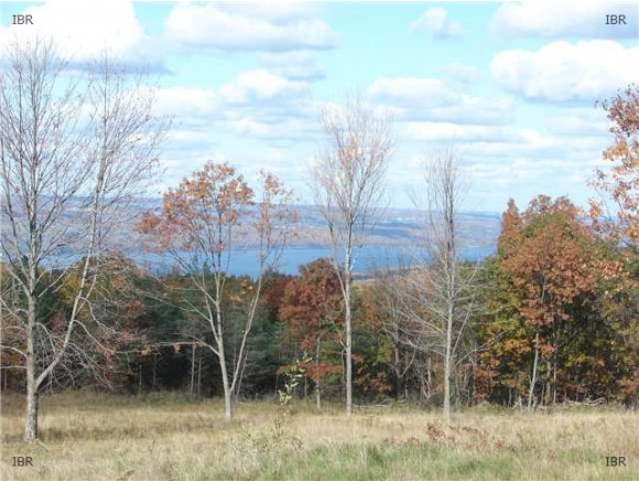 4419 SATTERLY HILL ROAD, PARCEL 5, Hector, NY 14818