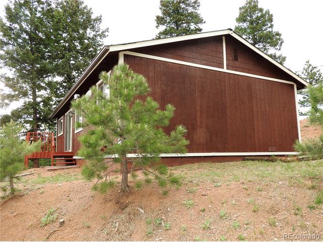 13454 S Cheyenne Court, Pine, CO 80470