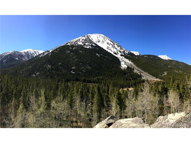 12721 State Highway 82, Twin Lakes, CO 81251