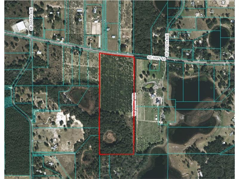 STATE ROAD 42, WEIRSDALE, FL 32195