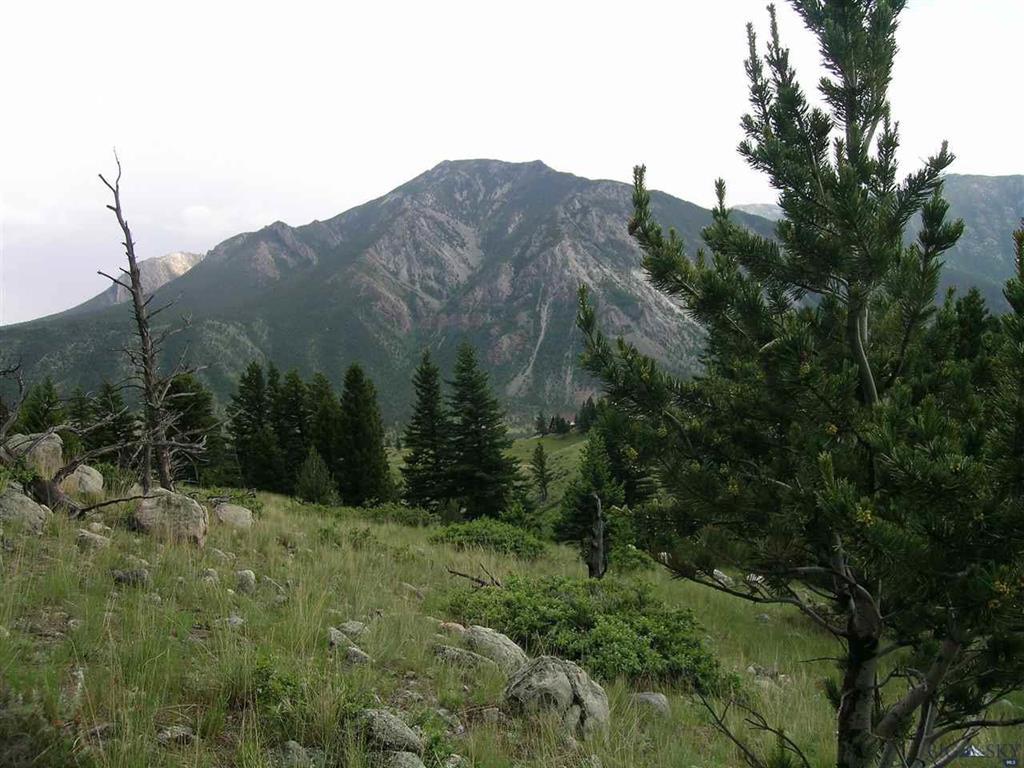 31 Cmr Trail, Nye, MT 59061