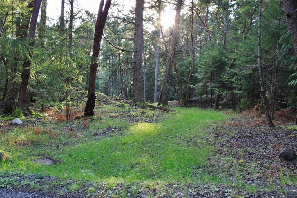 Lot 4 Spinnaker Lane, San Juan Island, WA 98250