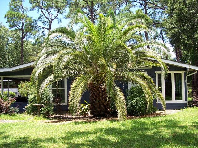 420 Magnolia Drive, Gulf Shores, AL 36542