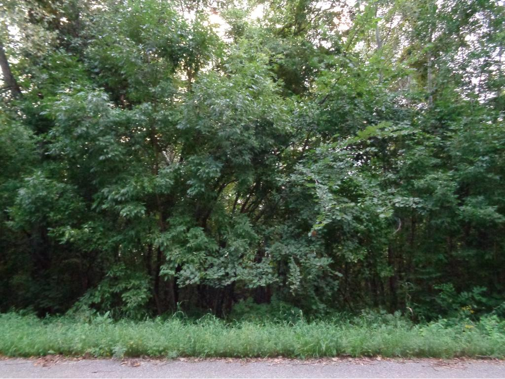 17911 Dove Hill Road, Eden Valley, MN 55329