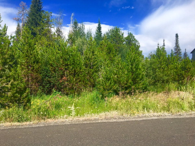 89 Forest Lake Circle, Donnelly, ID 83615