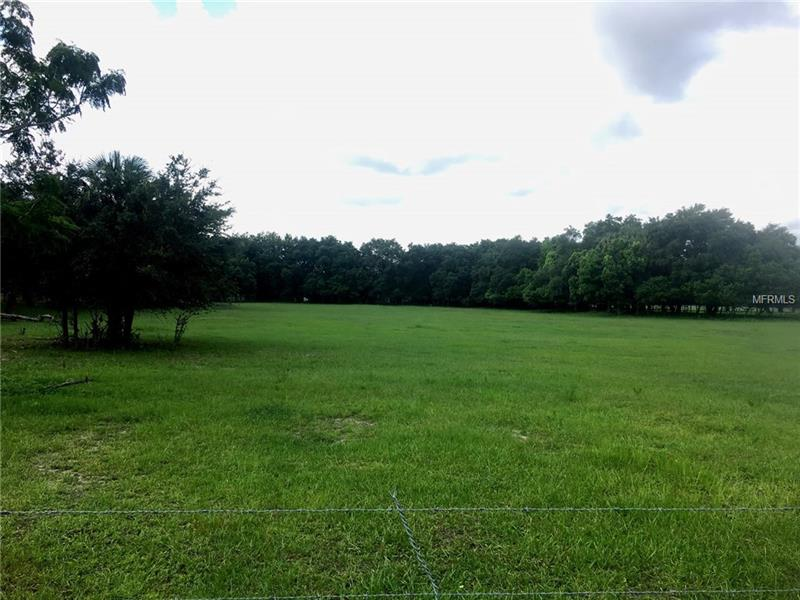 MAMMOTH GROVE ROAD, LAKE WALES, FL 33898