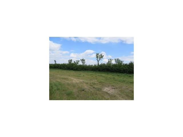 Twnsp 244 RR1, Rural Wheatland County, AB T1P 1J5