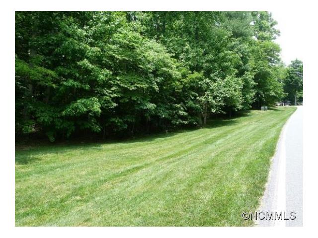This Level lot is very buildable and sits slightly above the road. Flat drive for easy access. Beautiful hardwoods draw the wildlife. Private setting, yet close to all the Club Amenities. No time limit to build. Champion Hills is a Member owned, debt free community located 8 minutes South of Hendersonville w/ a Tom Fazio Mountain designed Golf Course ranked #11 of all NC courses. Come and enjoy the people and the fun!