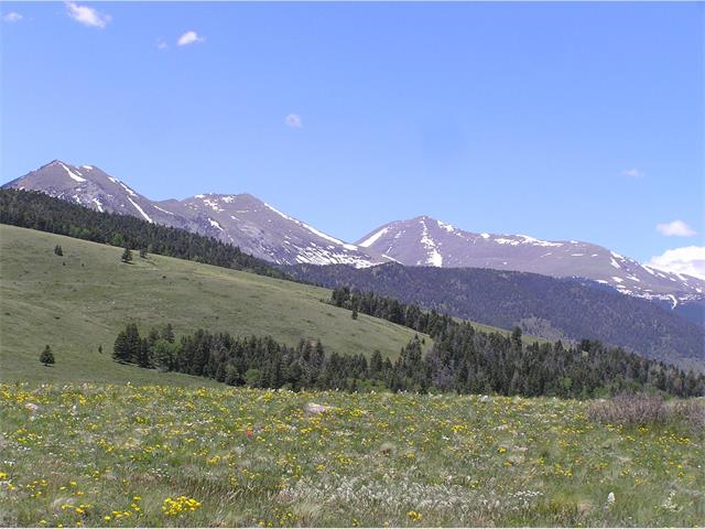 Undetermined, Westcliffe, CO 81252