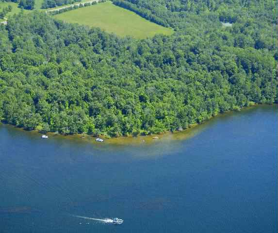 LOT 1 TAME FISH LAKE RD, Deerwood, MN 56444