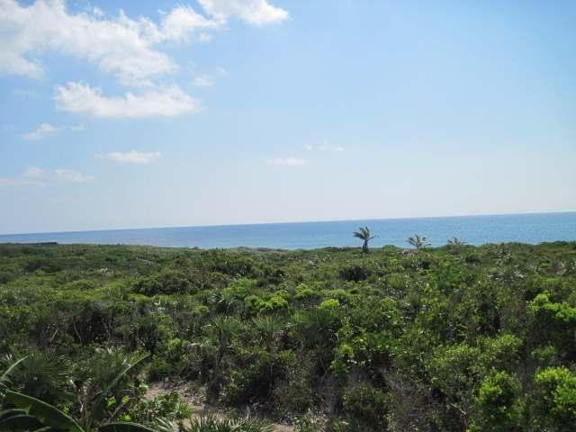 LITTLE HARBOUR ROAD, Abaco,  00008