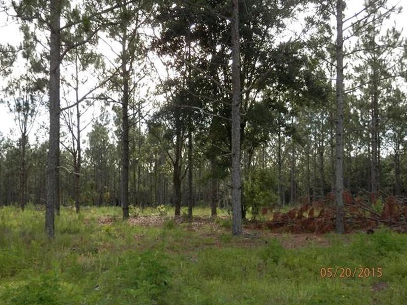 1950 E FOX CROSSING LANE, INVERNESS, FL 34453