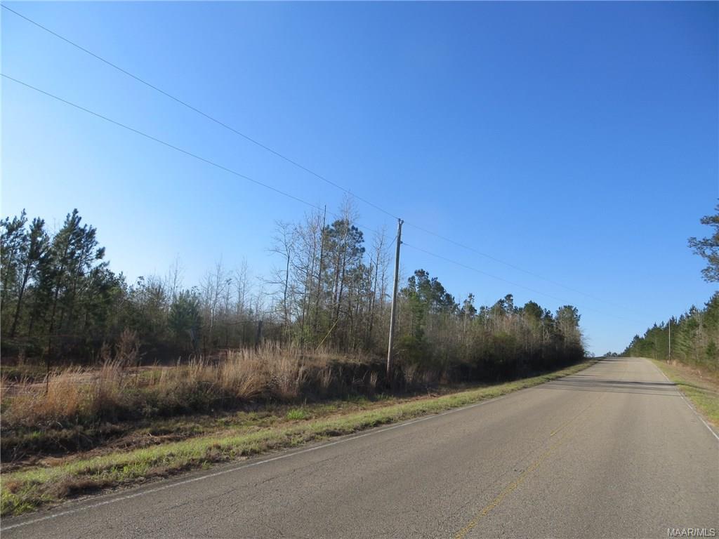 E Halso Mill Rd Highway, Greenville, AL 36037