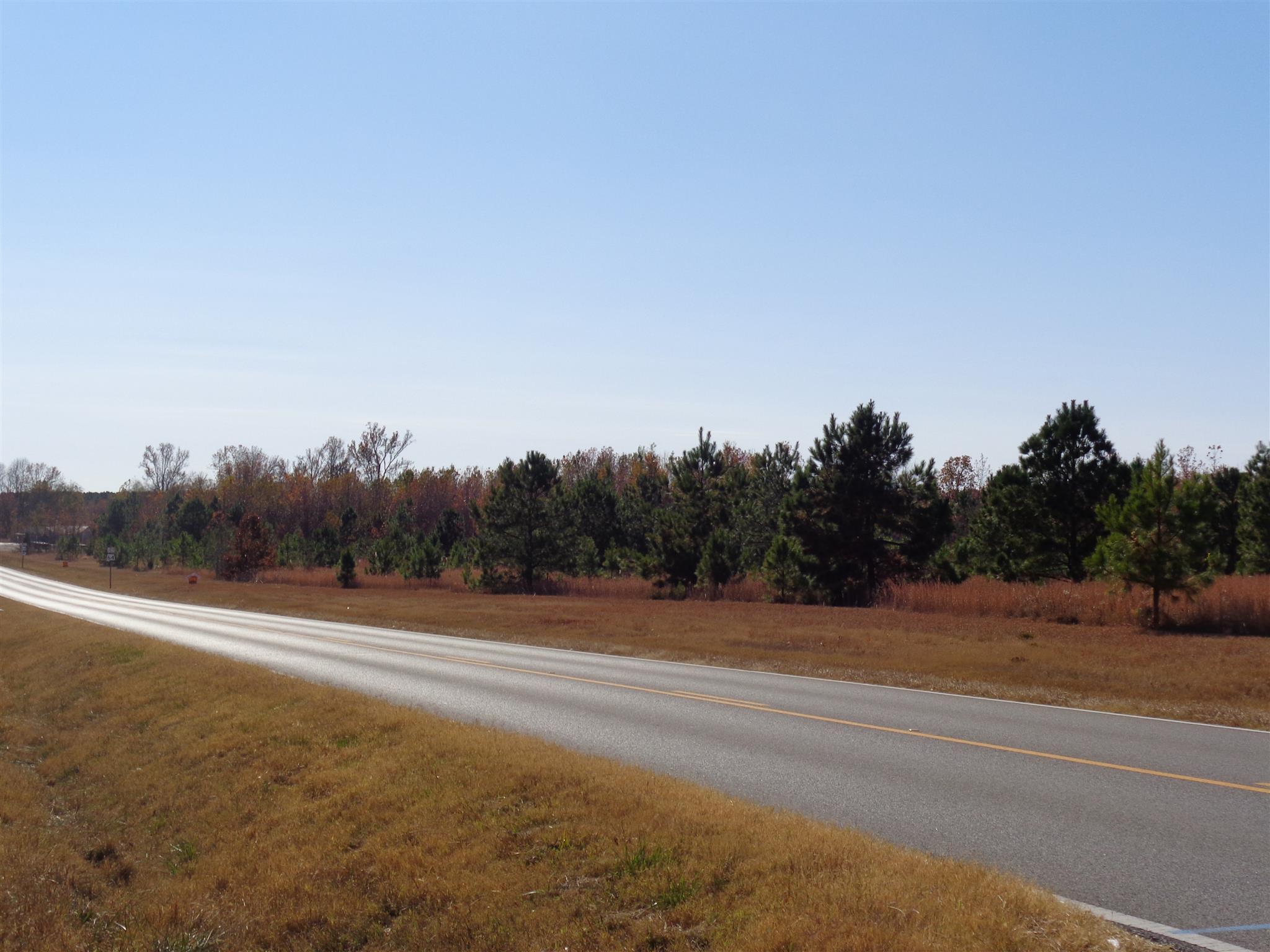 0 Hwy 207 South, Anderson, AL 35610
