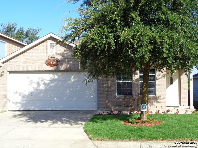 24723 Magnolia Fls, San Antonio, TX 78261