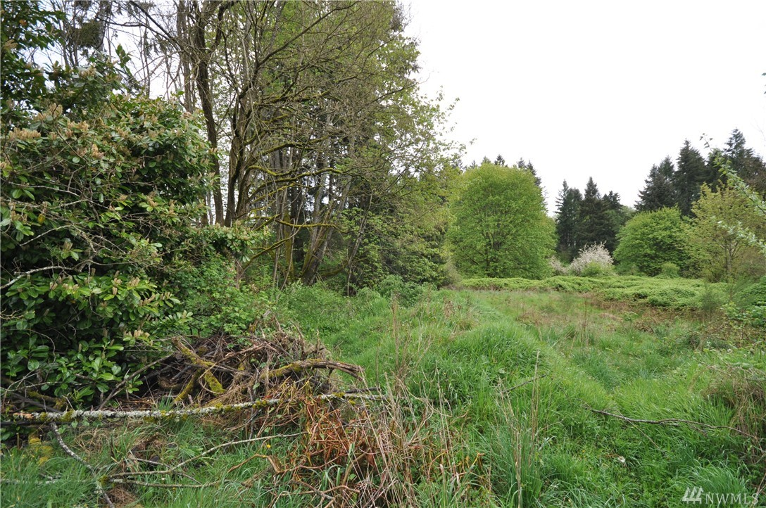 Pattison Street has the potential for 36 lots in a very popular area of Eastside Olympia. This was once preliminary plat approved with the vesting expired. The process should be pretty simple to resubmit. The services are all near and an easy site to develop!