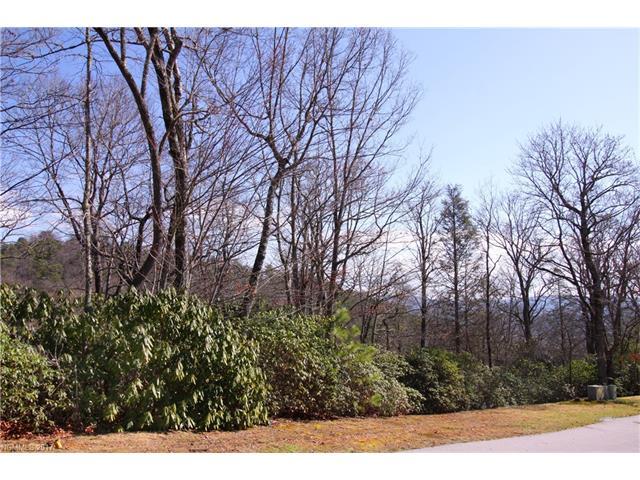 M84 Pine Mountain Trail M84, Brevard, NC 28712