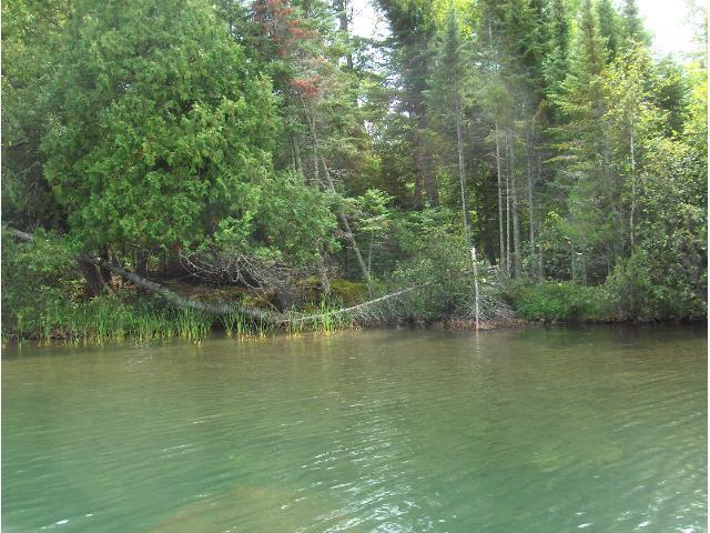 X1 Little Itasca Road, Deer River, MN 56636