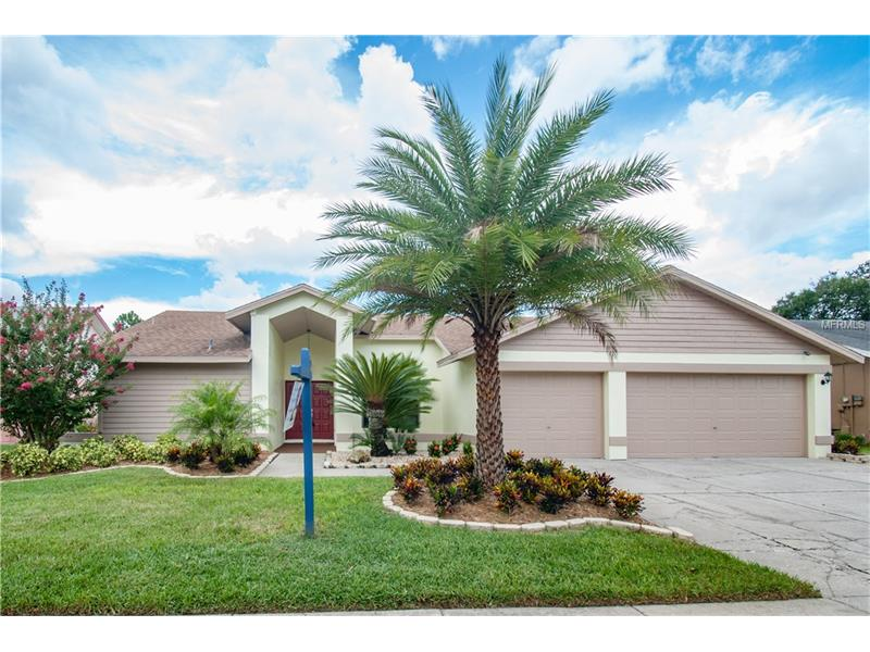 11323 TORREY PINES DRIVE, RIVERVIEW, FL 33579